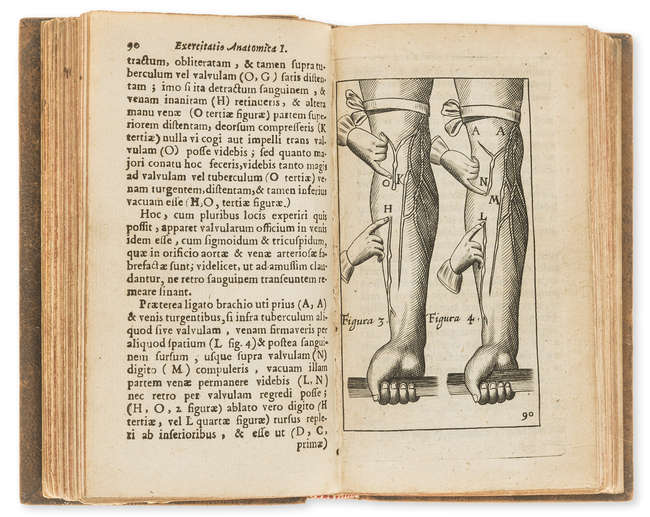 LOT:335 | Anatomy.- Harvey (William) Exercitationes anatomicae, de ...