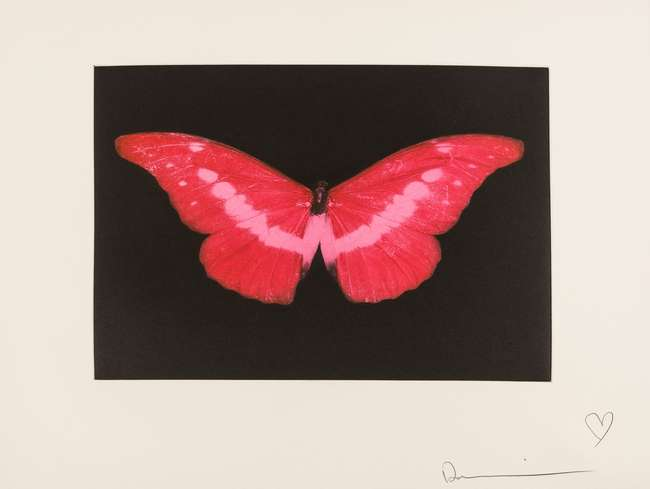 16Damien Hirst – Butterfly, proof aside from the edition