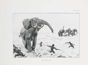 207  Africa.- Bell (W.D.M.), The Wanderings of an Elephant Hunter, 1st ed., orig. cl.-backed boards, 1923 & Széchenyi. Land of Elephants, 1st Eng. ed, orig. cloth, 1935 & 2 others by Bell (4)