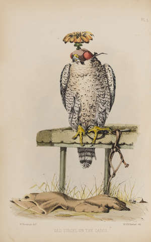 152