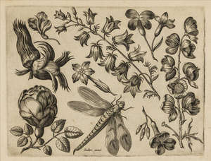 41