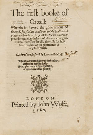 0